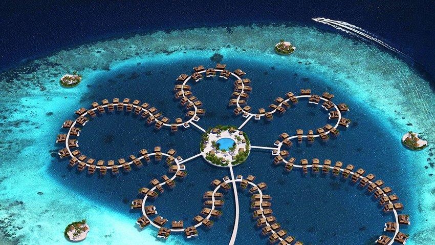 Maldives Koen Ocean Flower